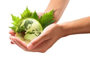 So richten Sie Ihre Geldanlage klimafreundlich aus