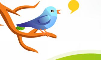 Eine Betrachtung der Twitteraktivitäten deutscher Banken und Sparkassen und deren erster Tweet