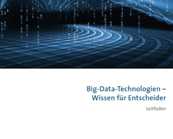 Der Big Data Leitfaden gibt einen Überblick, wie entsprechende Lösungen umgesetzt werden können