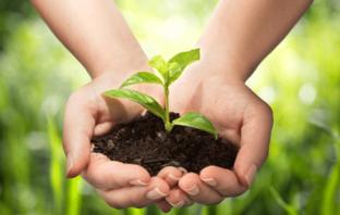 Nachhaltiger Erfolg beim Einsatz sozialer Medien erfordert Zeit und Ressourcen