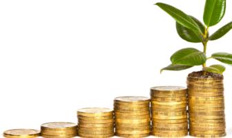 Über den Trend zum Mobile Payment und die unterschiedlichen Erwartungen und Anforderungen