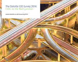 CIO Survey 2014