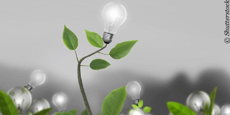 FinTech Start-ups im Vormarsch