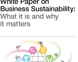 Business Sustainability