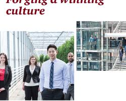 Kulturwandel Finanzdienstleistung