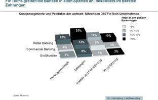 Kundensegmente und Produkte der weltweit führenden 350 FinTech-Unternehmen