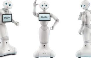 Pepper der Roboter