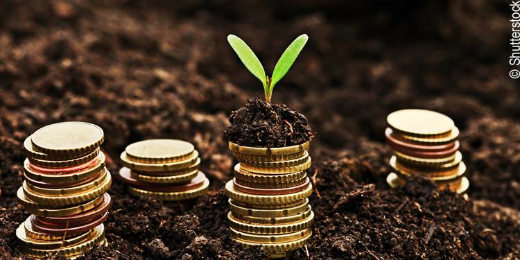 Prozesse der Bankberatung und deren Effizienz