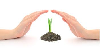 Vertrauen ist eine zarte Pflanze
