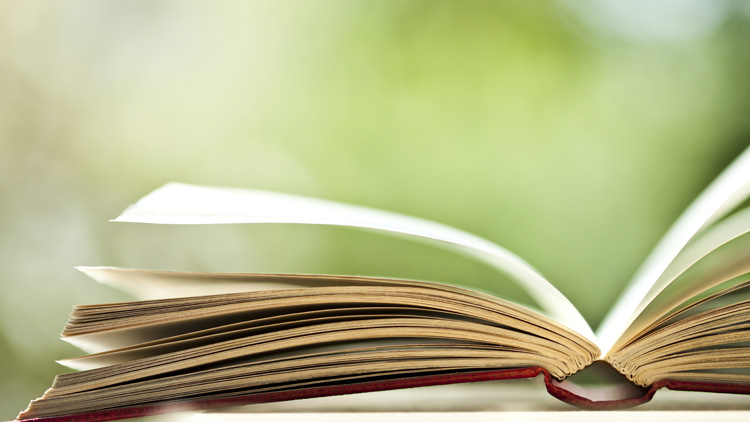 Top Business und Management Bücher des Jahres