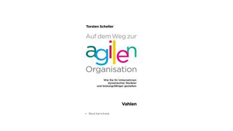 Torsten Scheller: Auf dem Weg zur agilen Organisation