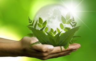 Auf dem Weg zu einem nachhaltigen Finanzsystem