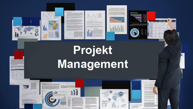 Projektmanagement auf den Punkt gebracht
