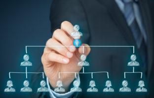 Netzwerke statt starrer Hierarchien