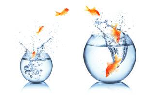 Agilität und die Zukunft der Banken und Sparkassen