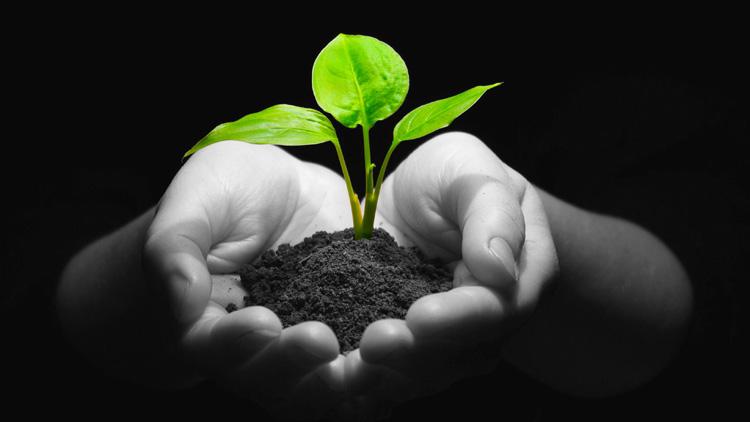 Nachhaltigkeitsziele in der Geld- und Kapitalanlage