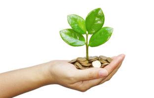 Steigender Nutzen nachhaltiger Geldanlagen