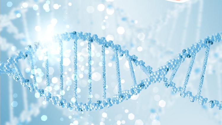 Das neue Banking Genom