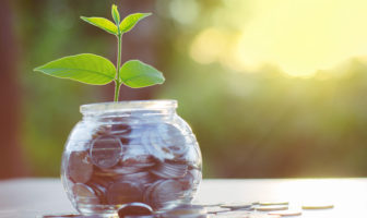 Nachhaltigkeit und Klimawandel im Finanzsektor
