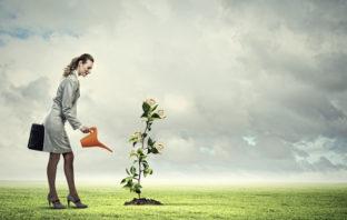 Banken als Treiber bei Klimaschutz und Nachhaltigkeit