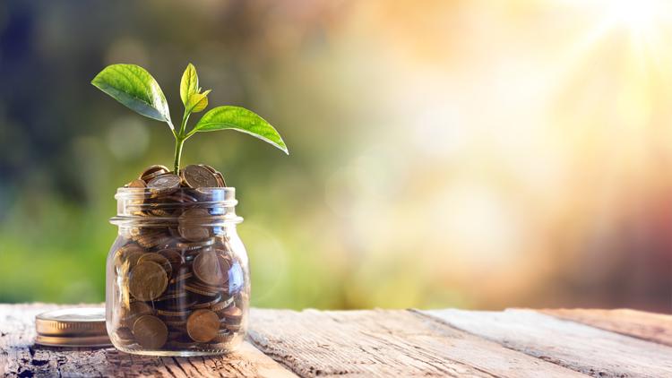 Nachhaltige Geldanlagen stoßen auf immer größeres Interesse.