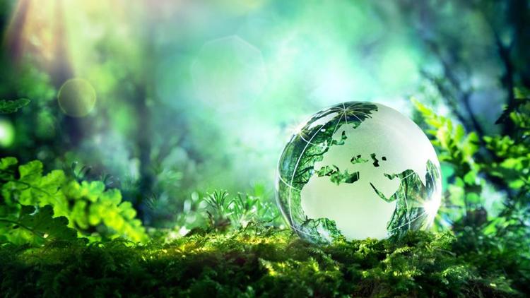 Beim Thema Nachhaltigkeit zählt nicht nur die Rendite