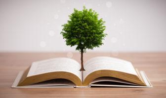 Initiativen der Europäischen Union zum Thema Nachhaltigkeit