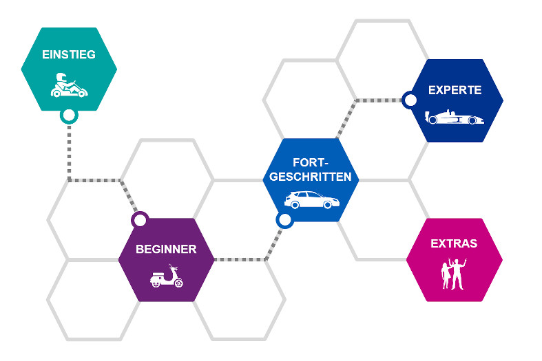 Struktur des Digitalen Führerscheins von KPMG