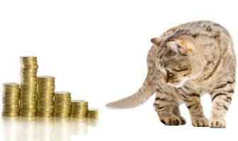 Bankmarketing dreht sich meistens um Geld und Finanzprodukte