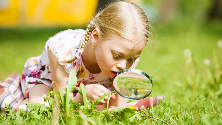 Neugier ist eine wichtige Voraussetzung für Kreativität und Innovation