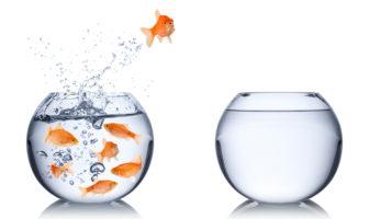 Geschäftsmodellinnovationen bedeuten Ausbrechen aus Gewohntem