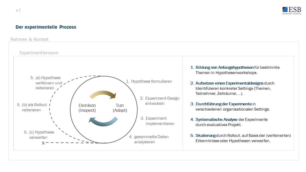 Der Prozess der experimentellen Organisationsentwicklung