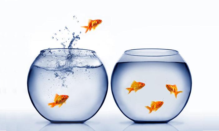 Immer mehr Kunden wechseln ihre Bank oder Sparkasse
